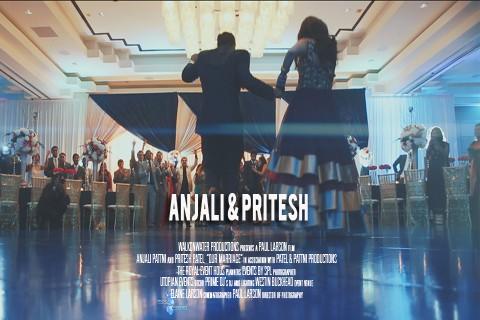 Anjali & Pritesh | Atlanta, Georgia
